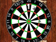 3D Darts